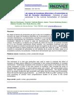 Paper Efecto de La Inclusión de Cepas de Levaduras Diferentes a S.cerevisiae En