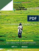 Características y percepciones sobre el trabajo infantil en la ganadería altoandina