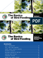 Birdfeeding Basics