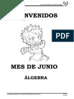 LIBROS  I.C.M  PAG álgebra 4to ok.pdf