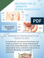 Manuel Expo Farmaco