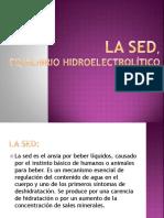 hidroelectrolítico