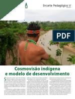 Povos Indigenas e Desenvolvimento_Porantim