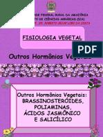 12.OutrosHormoniosVegetais(Unidade7.5)