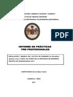 infrime-PPP-MAIRA-maira-santisteban-vilca-original (1).docx