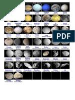 Solar System.docx