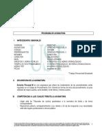 programa procesal.pdf