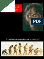 2. Teoría de La Evolución