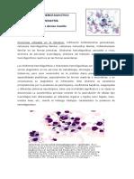Sindrome Hemofagocitico en Pediatria (Revision)