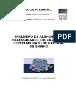 ORIENTAÇOES PARA INCLUSAO.pdf
