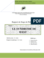 Syndrome de West - Rapport de stage