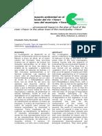 Dialnet-EvaluacionDeImpactoAmbientalEnElPlanoDeInundacionD-5608598