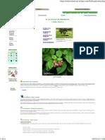 frambuesa 4.pdf