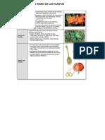 Solución Actividades Del Libro EL REINO de LAS PLANTAS