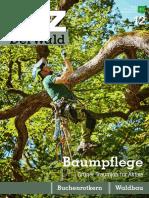 AFZ Der Wald (2019) 06
