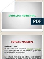 Derecho Ambiental(3)