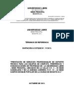 T-R-SERVICIO-SOPORTE-TECNICO-2014.doc