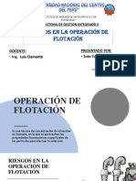 Expocicion Re Riesgos en Operacion de Flotacion