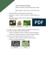 Tipos de Metabolismo Microbiano
