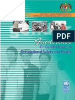 Gender Issues in OSH 2003.pdf