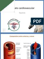 Aparato cardiovascular ppt.pdf