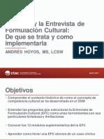DSM-5 Entrevista de Formulacion Cultural - EFC LF