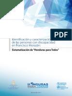Identificacion y Caracterizacion de Las PcD en FM2017 (1)