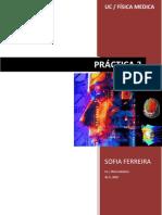 PDF - Sofia Ferreira Practica 3