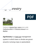 Agroforestry - Wikipedia.pdf