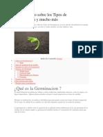 germinacion.docx