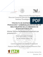 Estudio de inversion_miel de   abeja (1).pdf