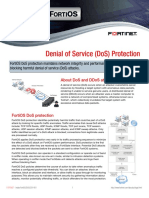 Denial of Service (DoS) Protection