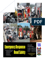 ERRS PDF