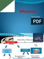 parasito31-bilharzioses