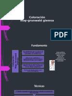Coloracion.pptx