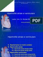 lucrare practica Hipertrofiile.pdf