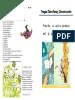 poemas1