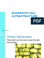 Ultra Structure