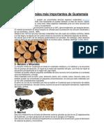 Recursos Naturales Más Importantes de Guatemala
