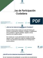 proceso participacion ciudadana