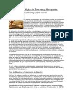 Análisis Microbiológico de Turrones y Mazapanes