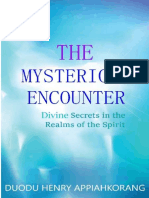 The Mysterious Encounter(Read Online).pdf