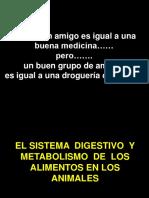 Agroindustria 1_El Sistema Digestivo de Los Animales_Febrero 2017
