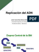 41. Replicacion DNA