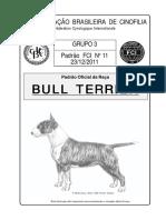 bullterrier-padrao cbkc