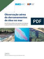 Aerial Observation PT