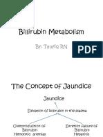 1. Metabolisme Bilirubin, Albumin dan Globulin (dr. Taufiq).pptx