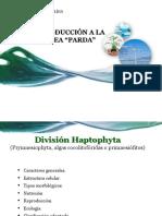 6ta Clase Division Haptophyta