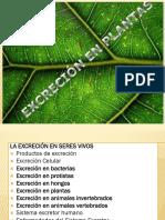 Excrecion en Plantas