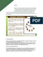 El Multilingüismo en El Perú